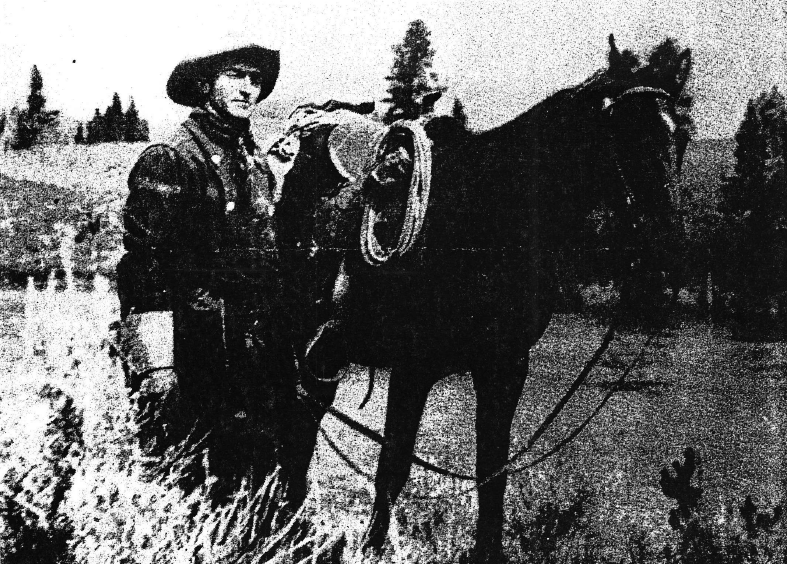 Charles Owen Williamson on Collection: From Range-bred Broncs to High School Dressage