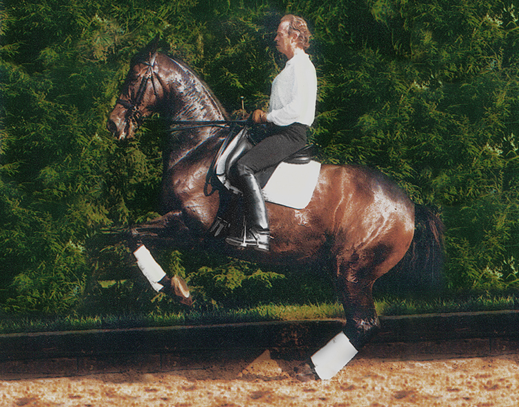Paul Belasik: Why are Fundamental Problems Persisting in Modern Dressage? (Part I of III)